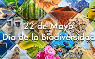 22 de mayo Día de la Biodiversidad